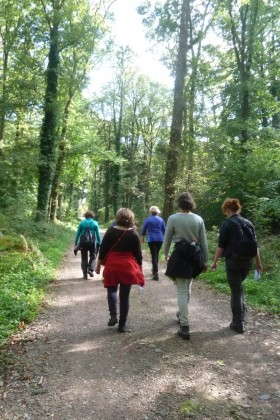 Groepsaanbod Eigenspoor wandelcoaching